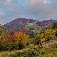Закарпатская осень 2014 :: Василий Ворохта