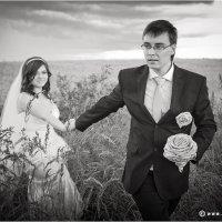 **** :: Сергей Фомченков