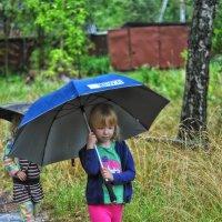 А Вы давно гуляли под дождём? :: Ирина Данилова