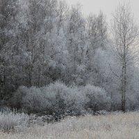 Чародейка Зима. :: Маргарита ( Марта ) Дрожжина