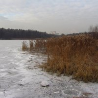 IMG_6291 - К зиме готовы! :: Андрей Лукьянов