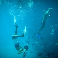 Подводная съёмка :: Александр Фадин