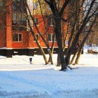 1 декабря . Зима во дворе . :: Мила Бовкун
