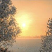 Утренний морозец :: Nikita Volkov