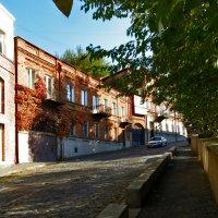 Осень в своем разнообразии :: Наталья Джикидзе (Берёзина)