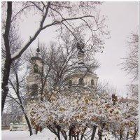 Первый снег. :: Михаил Попов