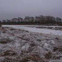 первый снег :: Алексей -