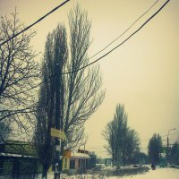 1 декабря 2о14 :: Valeriya Voice