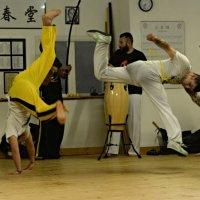 capoeira :: KALYVA NATALIA