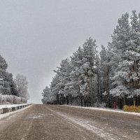 Первый день зимы. 01.12.2014. 01. :: Анатолий Клепешнёв