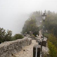 туман :: Андрей Данилов