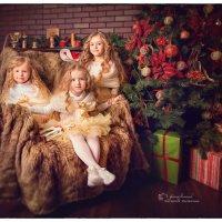 В ночь перед Рождеством :: Евгения Малютина