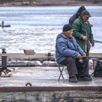 Рыбаки и зрители :: Игорь Кузьмин