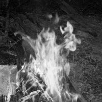 Дух огня :: Инна Буяновская