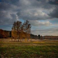 Бородинский пейзаж :: Виктор Перякин