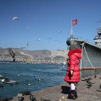 Беседы с птицами на морском берегу... :: Константин Николаенко