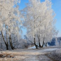 Зимний  пейзаж. :: Валера39 Василевский.