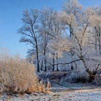 Второе  декабря.  Зима. :: Валера39 Василевский.