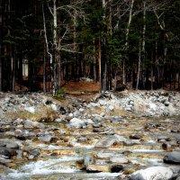 Пороги в Аршане :: Валерия