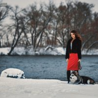 Зимняя фотосессия с Аляскинским маламутом :: Виталий Бартош