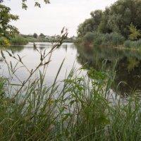 Озеро Банное.. :: Владимир Сквирский