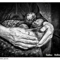 Мамины руки. :: Павел Новоселов
