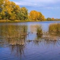 Осень на Агидели :: Любовь Потеряхина