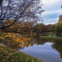 Поздняя осень...Франция. :: Александр Вивчарик