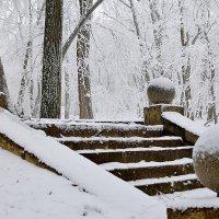 Зима... :: Мария Климова