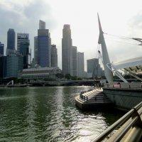 Сингапур :: Елена Шемякина