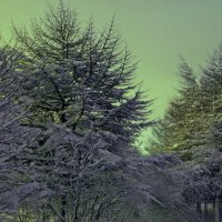 Зима :: Борис Швец