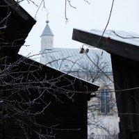 5-12-14 :: Юрий Бондер