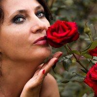Розы :: Александр GS