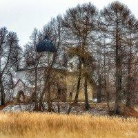 Церковь Олега Брянского в Осташево :: Дмитрий Булатов