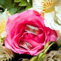 Цветок :: Инесса Янцен