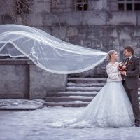Зимние свадьбы :: Евгений Ланин
