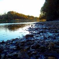 Берег реки :: оксана