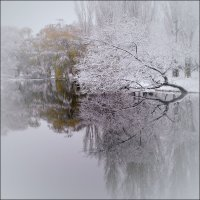 Первый снег :: viktor minchenko