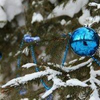 скоро Новый год :: Tatyana Belova