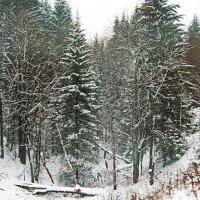 А за окном снег :: val-isaew2010 Валерий Исаев