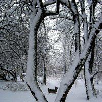 Это было весной.. :: Антонина Гугаева