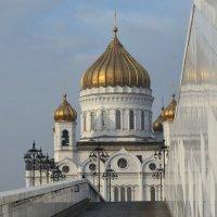... и отражение. :: Александр Степовой