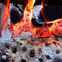 Горят в печи дрова.. :: Антонина Гугаева