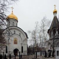 Храм Преподобной Евфросинии Московской. :: Oleg4618 Шутченко