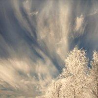 Салют зиме :: Валерий Талашов