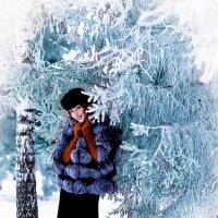 В объятиях зимы :: Алексей Аркатов