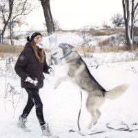 Снежная3 :: Оксана Коваленко