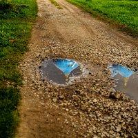 Дорога к храму :: Александр Фролов