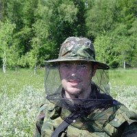 Без накомарника никуда! :: Андрей Синицын