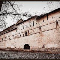 Монастырскя стена (Симонов монастырь. Москва) :: Михаил Малец